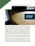 409480202-fermentacion-de-cerveza.docx