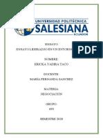 ENSAYO ENTORNO DIGITAL_ERICKA TACO