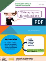TÉRMINOS EXCLUIDOS