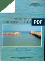 Thapsus-Younes1999.pdf
