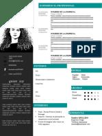 77-curriculum-vitae-template.docx