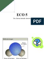 Eco 5.pptx