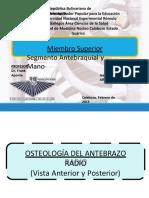 anatomiaantebrazoymano-160623195619