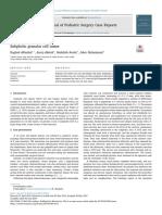 granular cell tumor.pdf