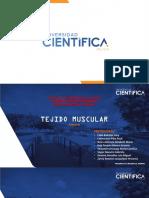 4 PRÁCTICA DE MUSCULAR ESTRIDO ESQUELÉTICO_2020