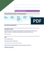 M7.315-20191-1064969-prácticaDeEvaluaciónContínua1.DiseñoOrganizacional.