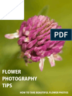 Flower Photography Tips - How to Take Beautiful Flower Photos