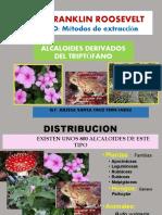 4TA  CLASE DERIVADO DEL TRIPTOFANO.pptx