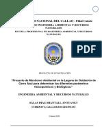 INFORME DE MONITOREO CERRO AZUL