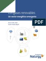 Gases_Renovables_2019.pdf