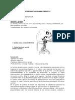 2.- BIOMECANICA_COLUMNA_CERVICAL.doc