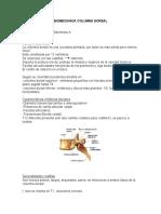 3.- BIOMECANICA_COLUMNA_DORSAL.doc