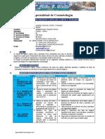 01_SILABO_Higien C.CorteyPeinado 2020.docx