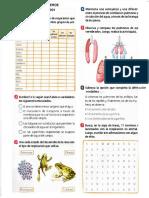 guia-2 de biologia de 1001.pdf