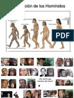 4. Evolución de los Homínidos