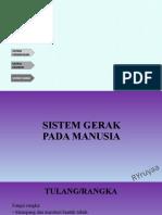 SISTEM ORGAN XI.pptx