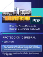 Neuroproteccion Cerebral