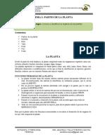 2. G. PARTES DE LA PLANTA-convertido