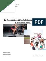 informe capacidad aeróbica, potencia anaeróbica y valencia física Gabriela Ruiz 4to año