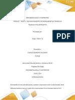 PSICOPATOLOGIA Y CONTEXTOS paso 3