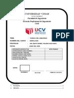CUENCA DEL AMAZONAS (1).docx