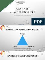 Aparato circulatorio I. Sangre. 22-04