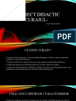 Proiect didactic curaj.pptx