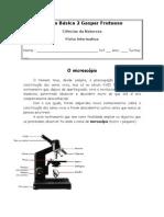 Ficha Informativa - Célula