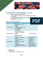 (13) TVP