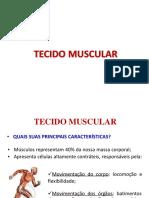 Tecido Muscular.pdf