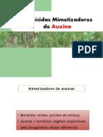 Mimetizadores de Auxina.pptx