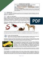 GUIAS-BIOLOGIA-10º-7