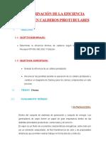 DETERMINACION-DE-LA-EFICIENCIA-TERMICA-EN-CALDEROS-PIROTUBULARES
