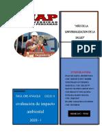 infor.._de_impacto_ambiental_practica 1