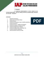 Informe Expediente Tecnico CAMINOS
