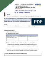 comunicacion dia 4 s10 (1).docx