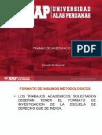 GUIAS DE TRABAJOS DE INVESTIGACION