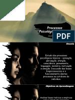 Aula 1_Apresentação Disciplina PPB (1).pdf
