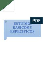 ESTUDIOS BASICOS Y ESPECIFICOS.docx