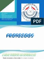 PROTOZOOS.-CARACTERISTICAS-Y-MORFOLOGIA.pptx