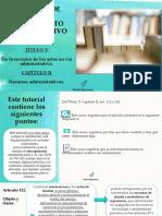 7 - Titulo V - Recursos Administrativos