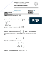 Matrices Álgebra Lineal S CAGL