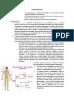 Resumen C2_Williams Henry Grijalva Santos.pdf
