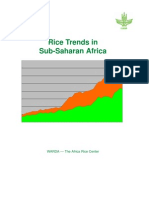Rice Trends Africa