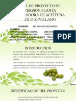 PERFIL DE PROYECTO DE INVERSION PLANTA PROCESADORA DE ACEITUNA ESTILO SEVILLANO FINALL