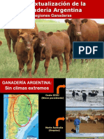 APO 2  Contextualización de la Ganadería de Carne Argentina 2020