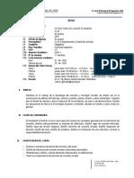 SILABO - ECA.pdf