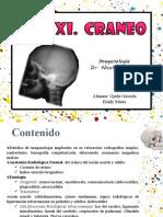 craneeorx-111006234610-phpapp02