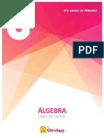 6to Año de Primaria - Algebra Libro de Teoria
