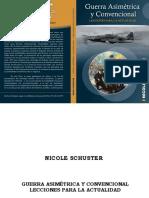 Guerra Asimetrica y Convencional - Nicole Schuster